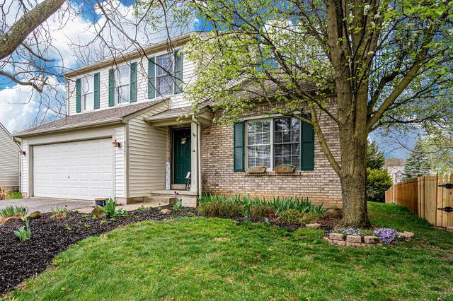 8543 Olenbrook Drive, Lewis Center, OH 43035 (MLS #221012007) :: Shannon Grimm & Partners Team