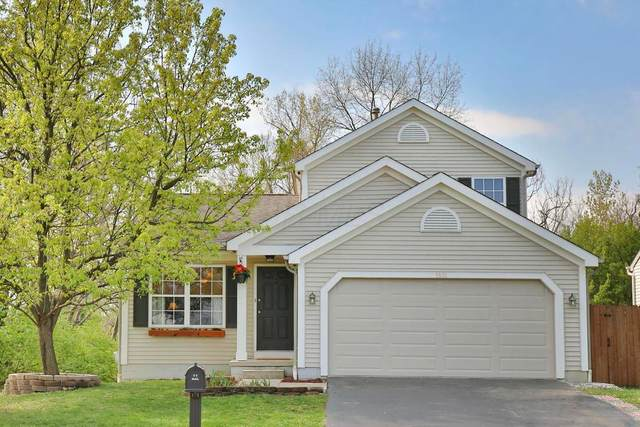 1881 Queens Meadow Lane, Grove City, OH 43123 (MLS #221012171) :: Jamie Maze Real Estate Group