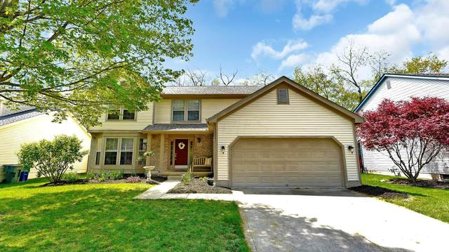 4655 Winery Court, Gahanna, OH 43230 (MLS #221012813) :: The Willcut Group