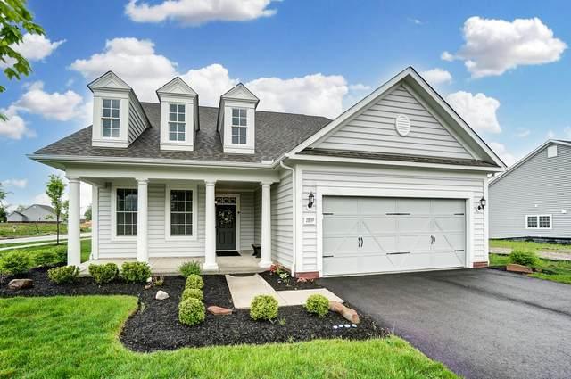7839 Eastcross Drive, New Albany, OH 43054 (MLS #221013661) :: Ackermann Team