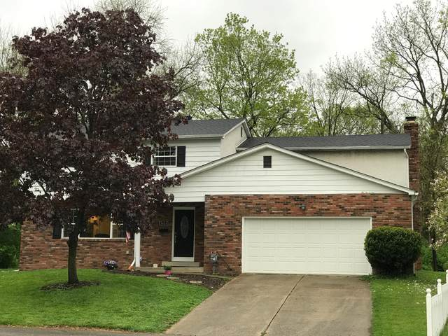 1024 Amberly Place, Columbus, OH 43220 (MLS #221013671) :: Exp Realty