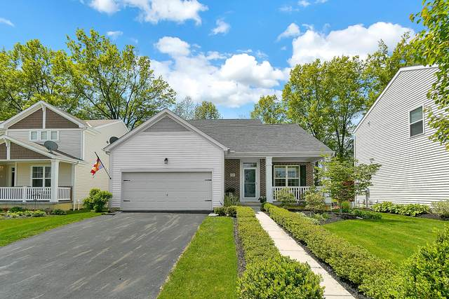 5767 Pittsford Drive, Westerville, OH 43081 (MLS #221014187) :: The Raines Group