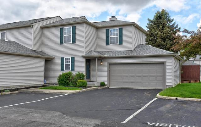 1689 Blackhorse Lane, Hilliard, OH 43026 (MLS #221014493) :: The Willcut Group
