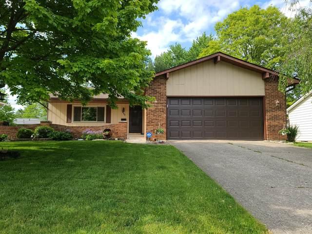 1886 Torchwood Drive, Columbus, OH 43229 (MLS #221015993) :: Jamie Maze Real Estate Group