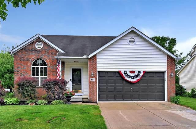 894 Brittany Drive, Delaware, OH 43015 (MLS #221017940) :: Sam Miller Team