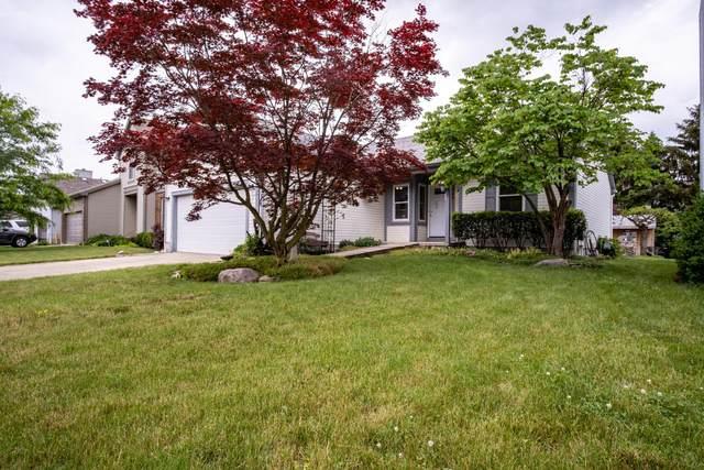 948 Larkfield Drive, Worthington, OH 43085 (MLS #221018464) :: Exp Realty