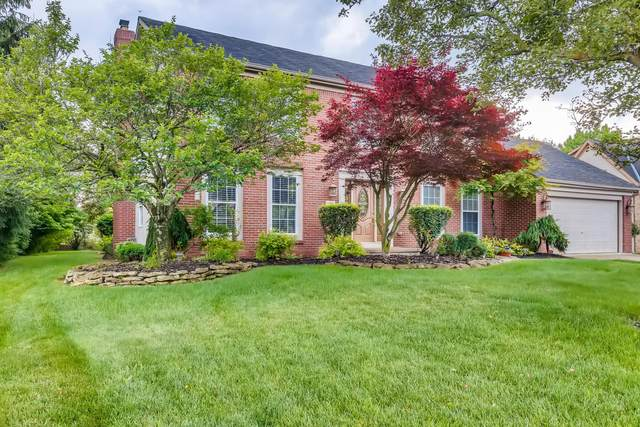 187 Wallsend Court, Powell, OH 43065 (MLS #221019625) :: Exp Realty