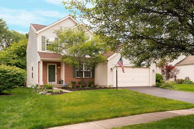 5737 Covington Meadows Drive, Westerville, OH 43082 (MLS #221020515) :: The Tobias Real Estate Group