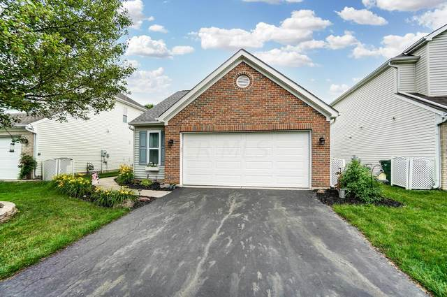 5790 Redsand Road, Hilliard, OH 43026 (MLS #221020622) :: Jamie Maze Real Estate Group