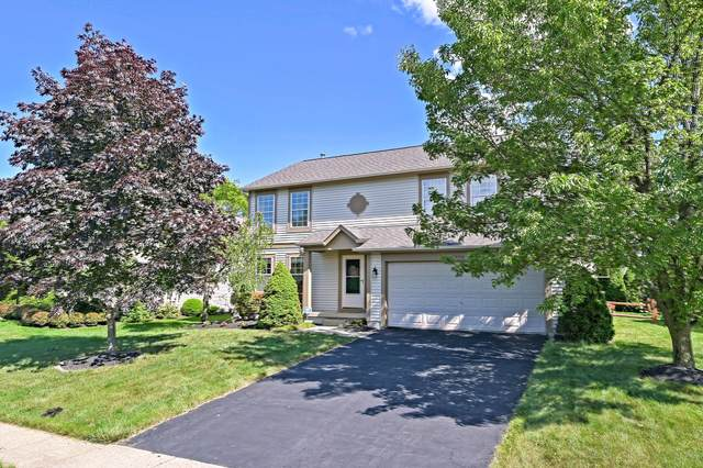 1558 Westwood Drive, Lewis Center, OH 43035 (MLS #221021920) :: Exp Realty