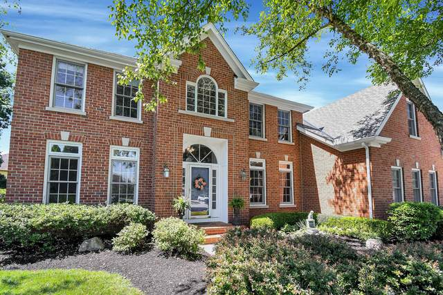 6160 Peppergrass Court, Westerville, OH 43082 (MLS #221022701) :: Jamie Maze Real Estate Group