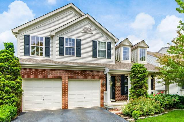 5950 Painted Leaf Drive, New Albany, OH 43054 (MLS #221024926) :: The Raines Group