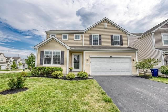 347 Mcelhinny Lane, Lewis Center, OH 43035 (MLS #221025157) :: Berkshire Hathaway HomeServices Crager Tobin Real Estate