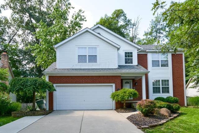 6133 Silverglade Drive, Columbus, OH 43230 (MLS #221025816) :: Exp Realty