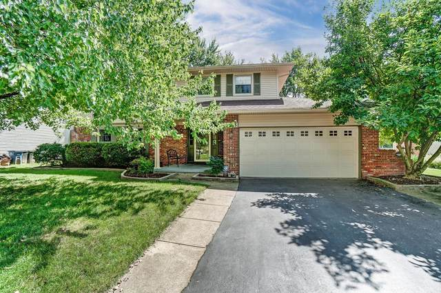 963 Cogswell Street, Westerville, OH 43081 (MLS #221032599) :: ERA Real Solutions Realty