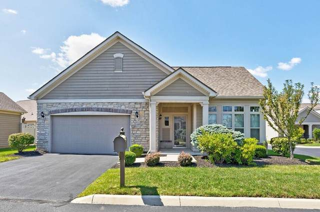 1105 Little Bear Drive, Lewis Center, OH 43035 (MLS #221034461) :: Berkshire Hathaway HomeServices Crager Tobin Real Estate