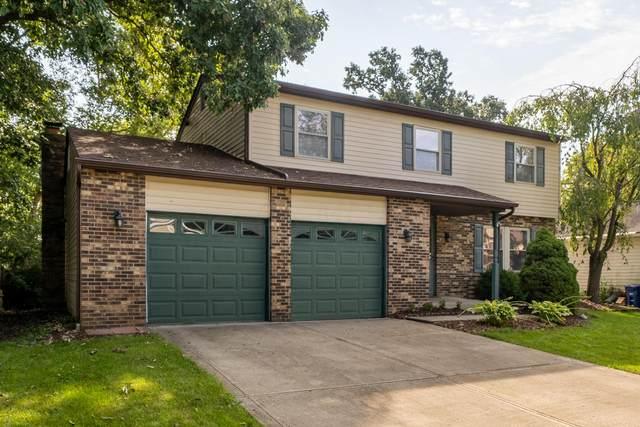 8222 Longhorn Road, Powell, OH 43065 (MLS #221034918) :: Greg & Desiree Goodrich | Brokered by Exp