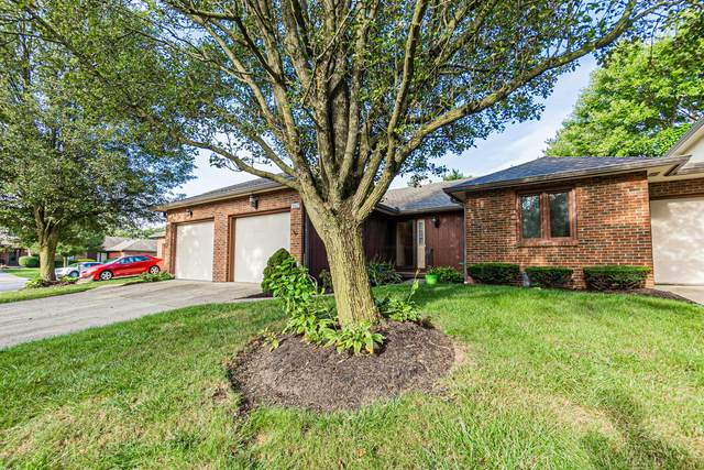 3167 Parkview Drive, Grove City, OH 43123 (MLS #221035278) :: Exp Realty