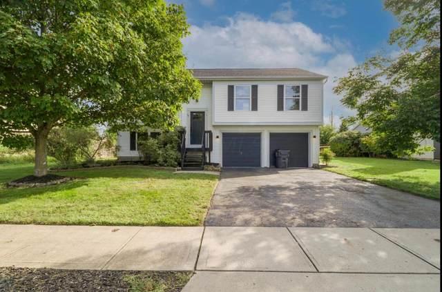 57 Ashton Drive, Ashville, OH 43103 (MLS #221035957) :: ERA Real Solutions Realty