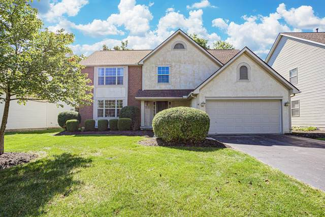 3851 Delwood Drive, Powell, OH 43065 (MLS #221037062) :: Millennium Group