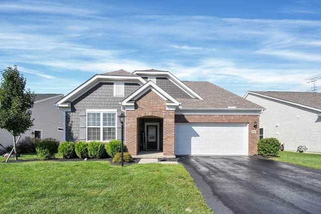 864 Zeller Circle, Pickerington, OH 43147 (MLS #221038530) :: ERA Real Solutions Realty