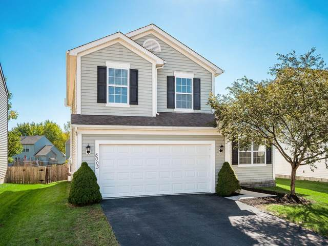 8003 Champaign Drive, Blacklick, OH 43004 (MLS #221040341) :: Sandy with Perfect Home Ohio