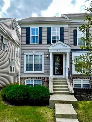 6241 Joes Hopper Road, Columbus, OH 43230 (MLS #221041052) :: Berkshire Hathaway HomeServices Crager Tobin Real Estate