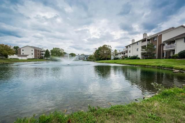 6823 Meadow Creek Drive #206, Columbus, OH 43235 (MLS #221041087) :: Jamie Maze Real Estate Group