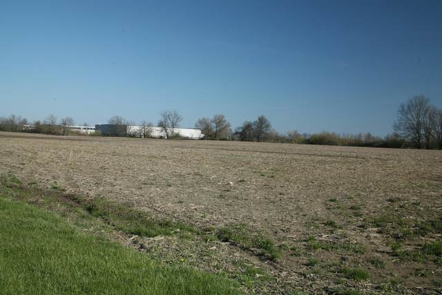 1723 S Section Line Road, Delaware, OH 43015 (MLS #216025916) :: CARLETON REALTY