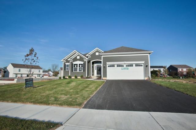 162 Edmonds Drive, Commercial Point, OH 43116 (MLS #217025945) :: Susanne Casey & Associates