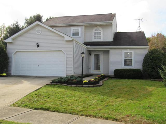 8568 Greylag Court, Blacklick, OH 43004 (MLS #217037525) :: RE/MAX ONE