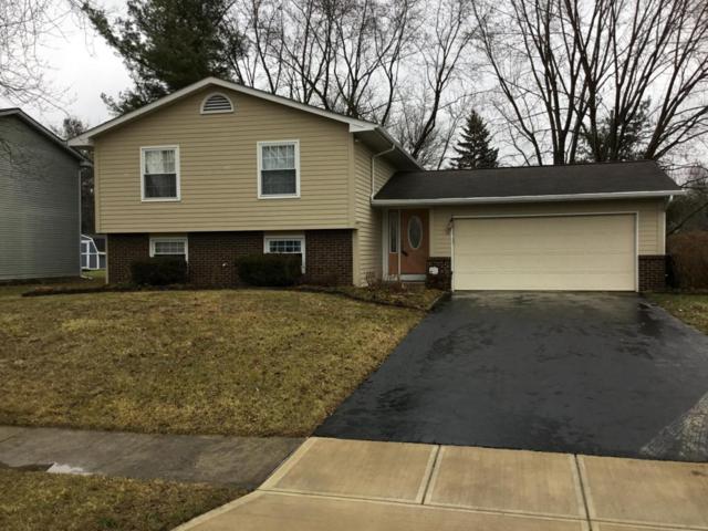 370 Brandy Hill Avenue, Pickerington, OH 43147 (MLS #218001981) :: Berkshire Hathaway Home Services Crager Tobin Real Estate