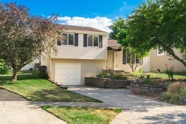 3747 Stirrup Court, Columbus, OH 43221 (MLS #218024521) :: The Mike Laemmle Team Realty