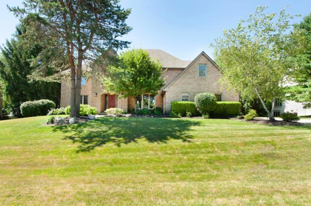 3764 Waverly Place Drive, Lewis Center, OH 43035 (MLS #218025465) :: Signature Real Estate