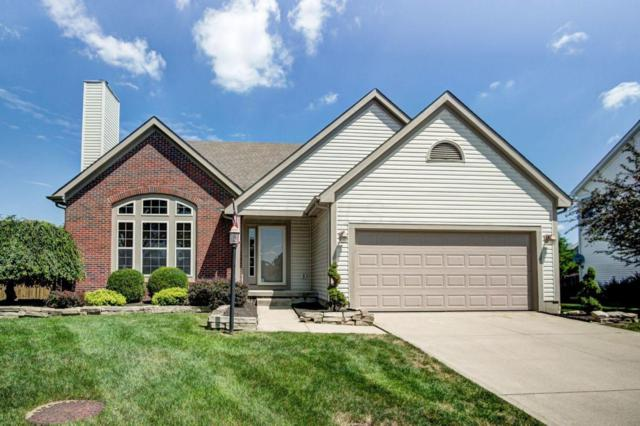 6566 Danbury Drive, Westerville, OH 43082 (MLS #218028104) :: Exp Realty