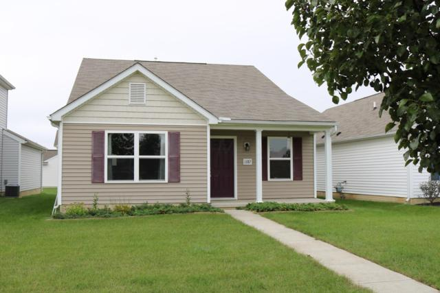 1387 Climbing Fig Drive #347, Blacklick, OH 43004 (MLS #218031368) :: Exp Realty