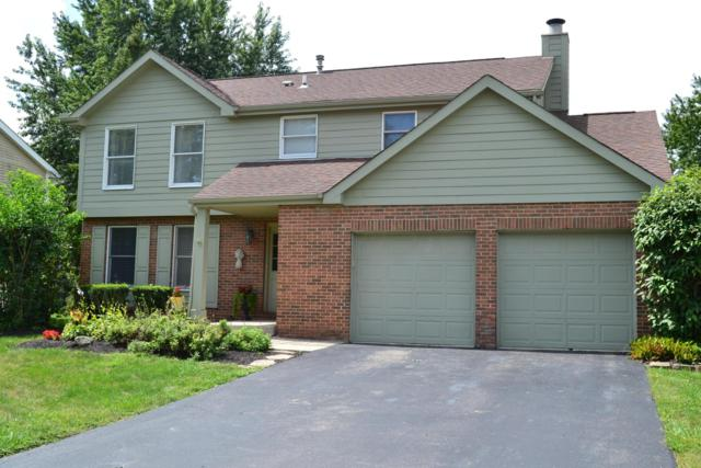 6873 Fallen Timbers Drive, Dublin, OH 43017 (MLS #218032346) :: RE/MAX ONE