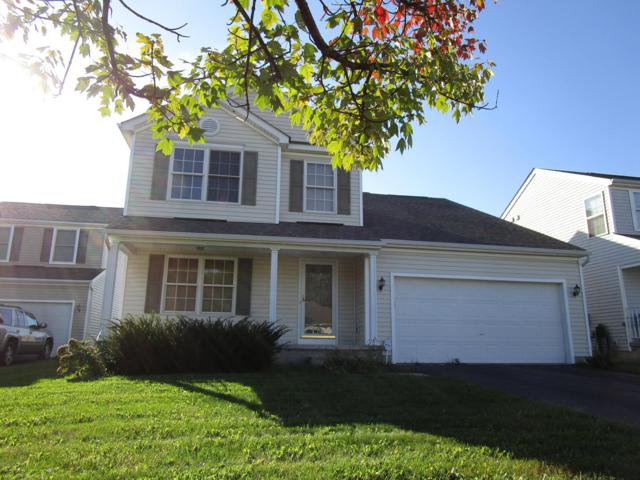 769 Grayfeather Drive, Blacklick, OH 43004 (MLS #218036581) :: Exp Realty