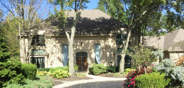 8426 Beeswing Court, Dublin, OH 43017 (MLS #218038628) :: Signature Real Estate