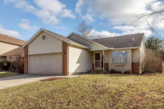 388 Hances Drive, Blacklick, OH 43004 (MLS #219004265) :: Brenner Property Group | KW Capital Partners
