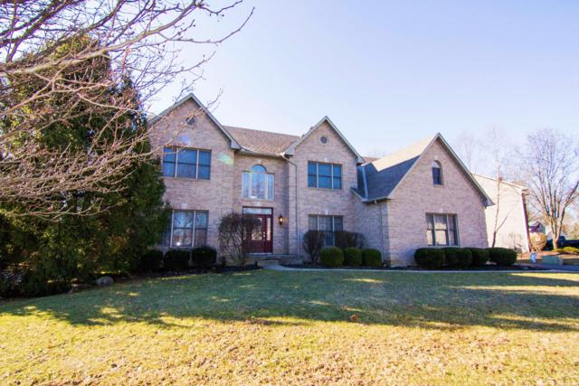7206 Hawksbeard Drive, Westerville, OH 43082 (MLS #219006419) :: Signature Real Estate