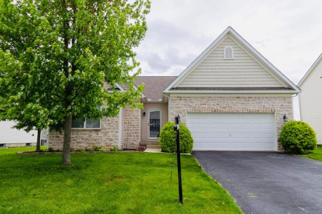 190 Red Oak Pass, Commercial Point, OH 43116 (MLS #219009165) :: Signature Real Estate