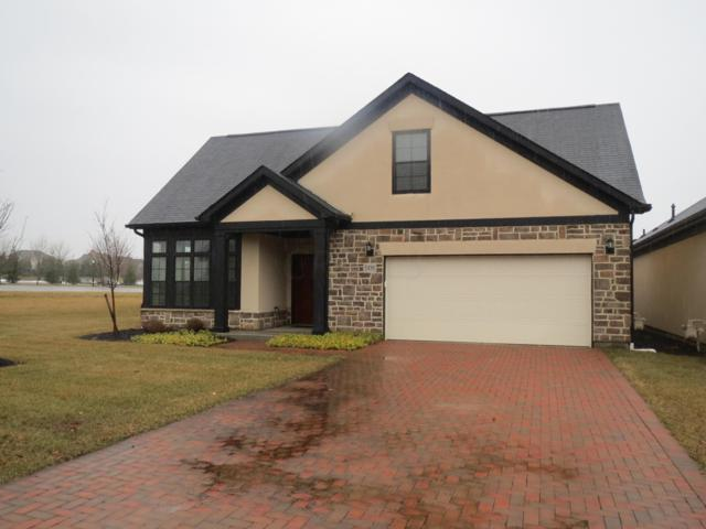 1430 Pinnacle Club Drive, Grove City, OH 43123 (MLS #219010024) :: Keller Williams Excel