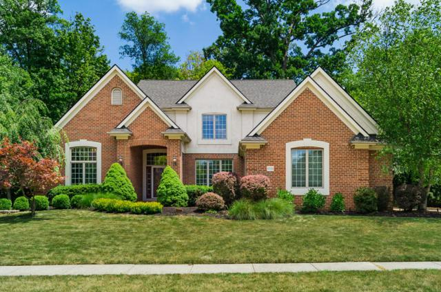 8330 Chippenham Drive, Dublin, OH 43016 (MLS #219010506) :: Huston Home Team