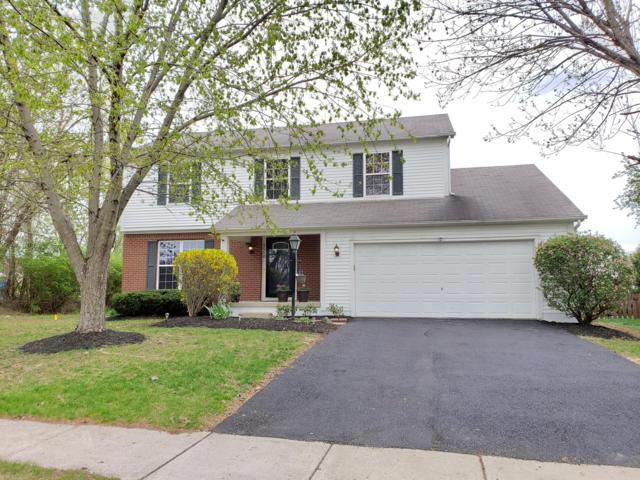 5510 Hyde Park Drive, Hilliard, OH 43026 (MLS #219012170) :: Signature Real Estate