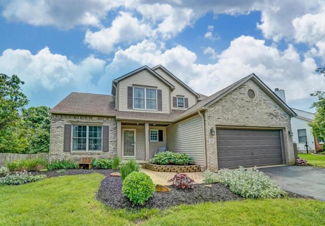 427 W River Drive, Grove City, OH 43123 (MLS #219016705) :: Signature Real Estate