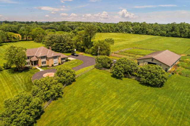 8378 Bevelhymer Road, Westerville, OH 43081 (MLS #219017906) :: The Raines Group