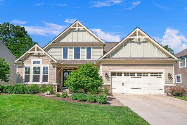 7728 Rowles Drive, Columbus, OH 43235 (MLS #219019803) :: The Clark Group @ ERA Real Solutions Realty