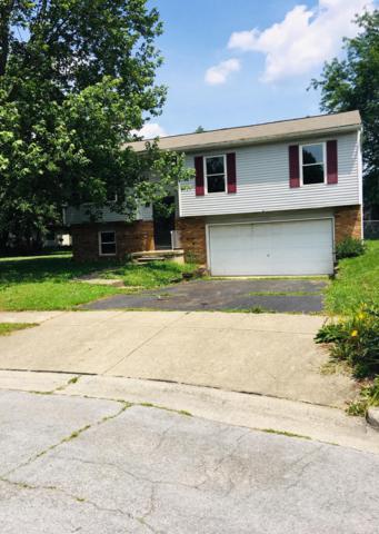664 Bainbrook Court, Reynoldsburg, OH 43068 (MLS #219020309) :: Signature Real Estate