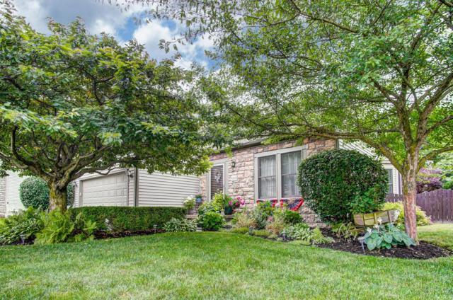 6309 Leslie Anne Court, Grove City, OH 43123 (MLS #219021189) :: Signature Real Estate